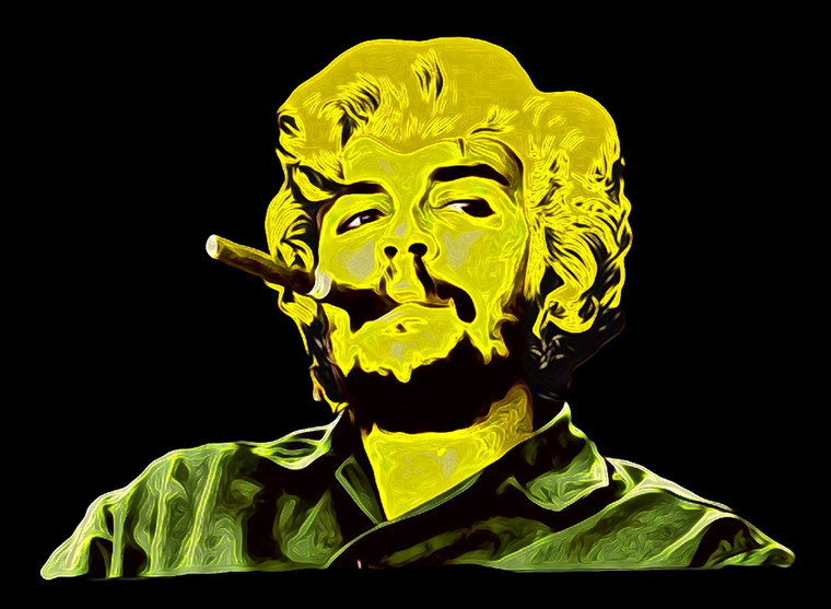 Che Warhol Digital Art.