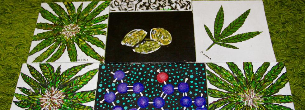 Cannabis Process Paintings. Mixed Media