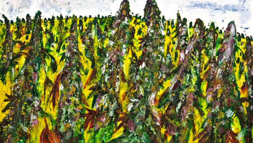 Cannabis Field. Oil on Board.