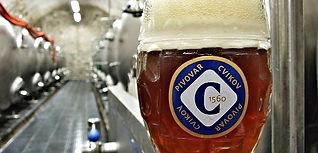 Brewery Cvikov