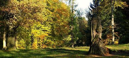 Arboretum Bukovinka