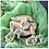 Thumbnail: Super Streusel Bunny'sCarrots 90 gr