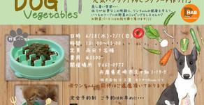 6/28(木)、7/1(日) トッピングフード作りセミナー