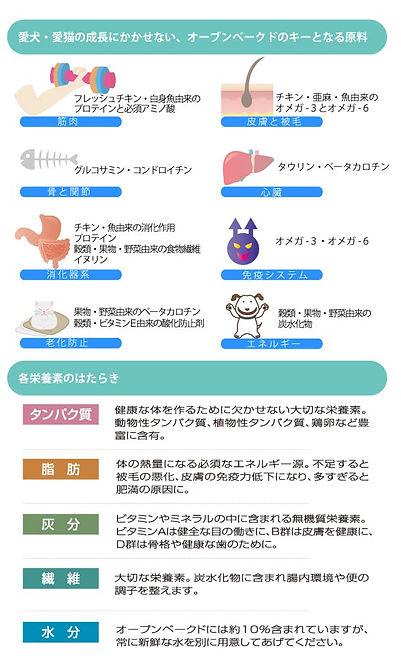 栄養素の働きイメージ.jpg