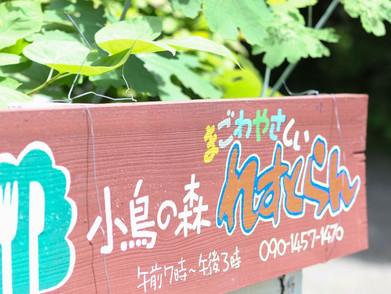 2021年4月より【小鳥の森れすとらん】開業開始!!