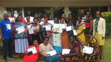 Training private midwives in eHMIS reporting