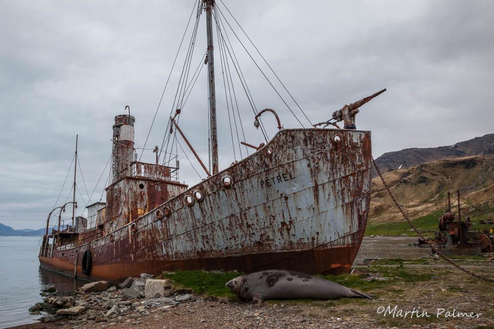 Petrel Whaling Ship at Grytviken