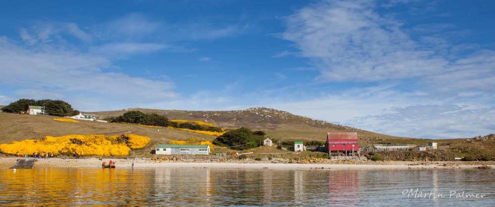 Westpoint Island, Falkland Islands