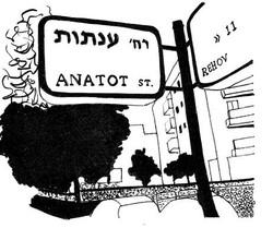 Anati street