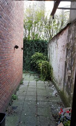 Old garden apt backyard