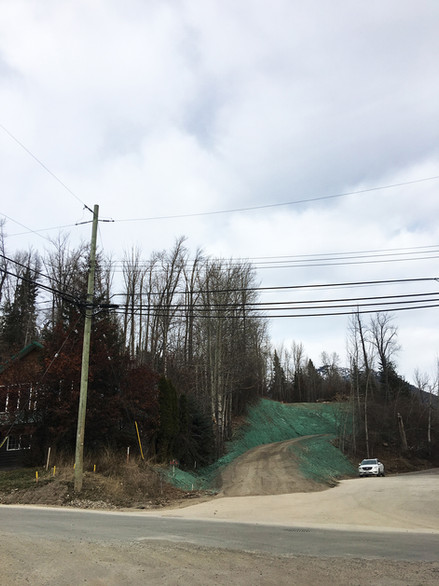 Beaver Street Driveway, Residential