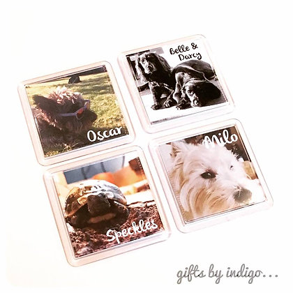 Pet Photo Magnet/Coaster