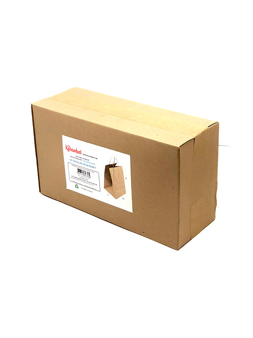 50 Sacolas AT34 Delivery -  34x24,5x21cm: Alça Torcida