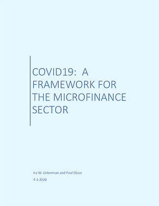 Ira Lieberman and Paul DiLeo Crisis Strategy for the Microfinance Sector_