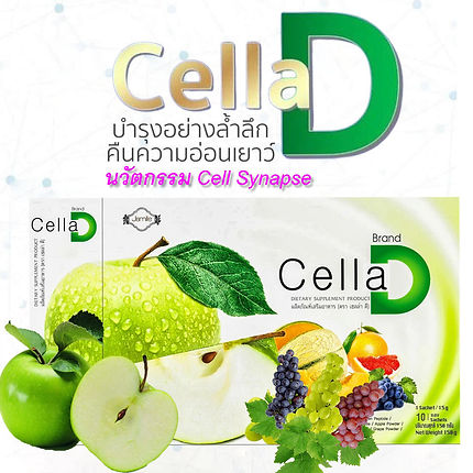 Cella D,Cell Synapse,PhytoSC,สเต็มเซลล์.