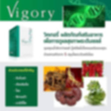 Vigory,วิโกรี่,มะเร็ง,เบาหวาน,ความดัน,ภูมิแพ้,ตับ,โรคตับ,บำรุงหัวใจ,ไต,หอบหืด