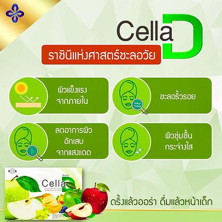 CellaD, สเต็มเซลล์.jpg