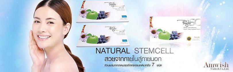 Phyto SC,ไฟโต เอสซี,สเต็มเซลล์,ฝ้า,กระ,ส