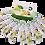 Thumbnail: CellaD สเต็มเซลล์ กระชับรูขุมขน ผิวขาว ลดริ้วรอย ลดจุดด่างดำ ชะลอความแก่