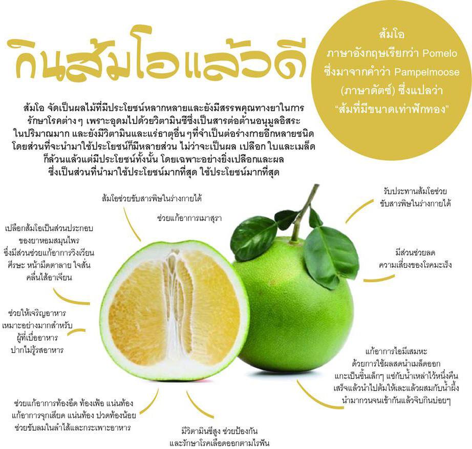 ส้มโอ เป็นผลไม้ที่มีประโยชน์มากมายและมีสรรพคุณทางยาในการรักษาโรคต่างๆ เนื่องจากอุดมไปด้วยวิตามินซีซึ่งเป็นสารต่อต้านอนุมูลอิสระในปริมาณที่มากพอ การรับประทานส้มโอ เพื่อหวังผลในเรื่อง ลดน้ำหนัก หรือ ลดความอ้วน โดยการ ออกกำลังกาย ควบคู่ด้วยก็จะเห็นผลลัพธ์ดี และ หากรับประทาน Caroline ผลิตภัณฑ์ ลดน้ำหนัก หรือ ผลิตภัณฑ์ ลดความอ้วน ด้วยจะทำให้เห็นผลลัพธ์ที่ดีมากๆ แน่นอน