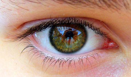 ดวงตา เป็นองค์ประกอบส่วนหนึ่งที่สำคัญยิ่งของร่างกายมนุษย์ ดวงตา เปรียบเสมือนหน้าต่างของหัวใจ และการมองเห็นที่ดี เป็นสิ่งสำคัญของชีวิต ดังนั้น บริษัท Masterpiece Life Vision จำกัด จึงพัฒนาผลิตภัณฑ์ Lutina ลูตินา ซึ่งเป็นผลิตภัณฑ์ช่วย บำรุงสายตา บนพื้นฐานของหลัก นูทริจีโนมิค เพื่อให้ได้ผลิตภัณฑ์เสริมอาหาร บำรุงสายตา ที่มีส่วนสำคัญของสารอาหารที่ช่วย บำรุงสายตา ด้วยสารสกัด       ลูทีน่า ( LUTEINA )จากดอกดาวเรือง ที่อยู่ในฟอร์มของ ลูทีนเอสเทอร์ ที่สามารถดูดซึมและมี  ประสิทธิภาพเพื่อให้ร่างกายนำเอาไปใช้ประโยชน์ได้สูงสุด และเพิ่มประสิทธิภาพด้วย ซิงค์ซัลเฟต เกลือของแร่ธาตุสังกะสี ที่ช่วยให้เซลล์จอประสาท ตา ว่องไวต่อการดูดซึมของวิตามินเอ มากยิ่งขึ้น พิสูจน์ประสิทธิภาพของผลิตภัณฑ์ Lutina ลูทิน่า ผลิตภัณฑ์ บำรุงสายตา ด้วยตัวของคุณเอง กับการมองเห็นที่ดีขึ้นได้ ภายใน 8-10 ชั่วโมง