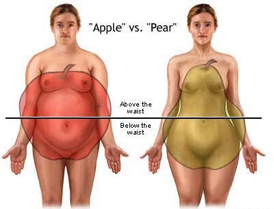 คนที่มีรูปร่างแบลูกแพร์ รูปทรงด้านล่างจะค่อนข้างใหญ่กว่าท่อนบน วิธีลดน้ำหนัก หรือ วิธีลดความอ้วน ก็จะแตกต่างกัน แต่เหนือสิ่งอื่นใด วิธีลดน้ำหนัก หรือ วิธีลดความอ้วน แบบธรรมชาติจำเป็นต้องออกกำลังกาย และต้องมีวินัยในการปฎิบัติอย่างต่อเนื่อง มิเช่นนั้นแล้วจะไม่ได้ผลลัพธ์ตามที่ต้องการ