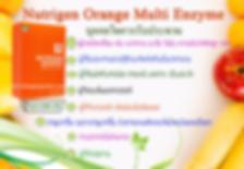 Nutrigen Orange Multi Enzyme,เอนไซม์,Nutrigen Orange,มัลติ เอนไซม์,โรค มะเร็ง,เบาหวาน,ความดัน