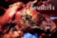 งาดำ,สารสกัดจาก งาดำ,เบาหวาน,มะเร็ง,ความดัน,immo,โรคมะเร็ง,มะเร็งลำไส้ใหญ่jpg