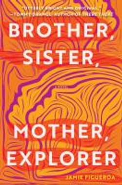 Brother sister mother explorer, a novel.