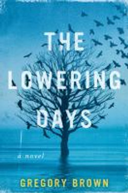 The lowering days, a novel