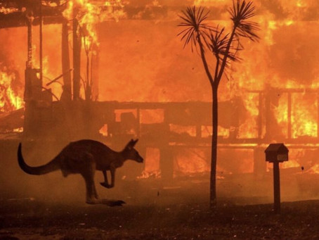 Amazon's donation to the Australian wildfires provoked a backlash and Facebook's didn't - Why?
