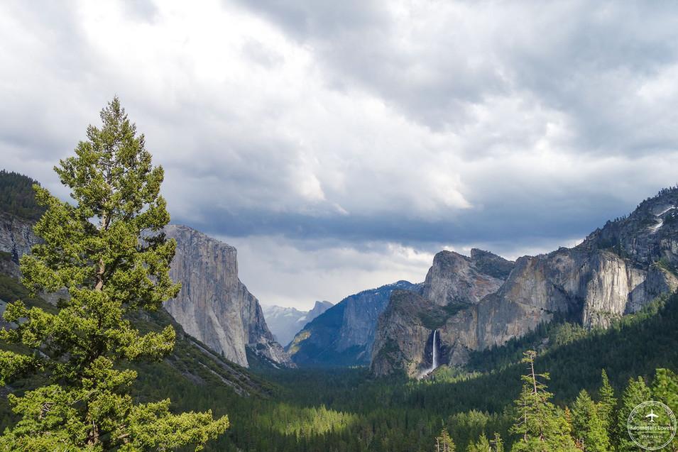 California - Yosemite NP