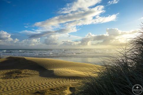 NZ - 90 miles beach
