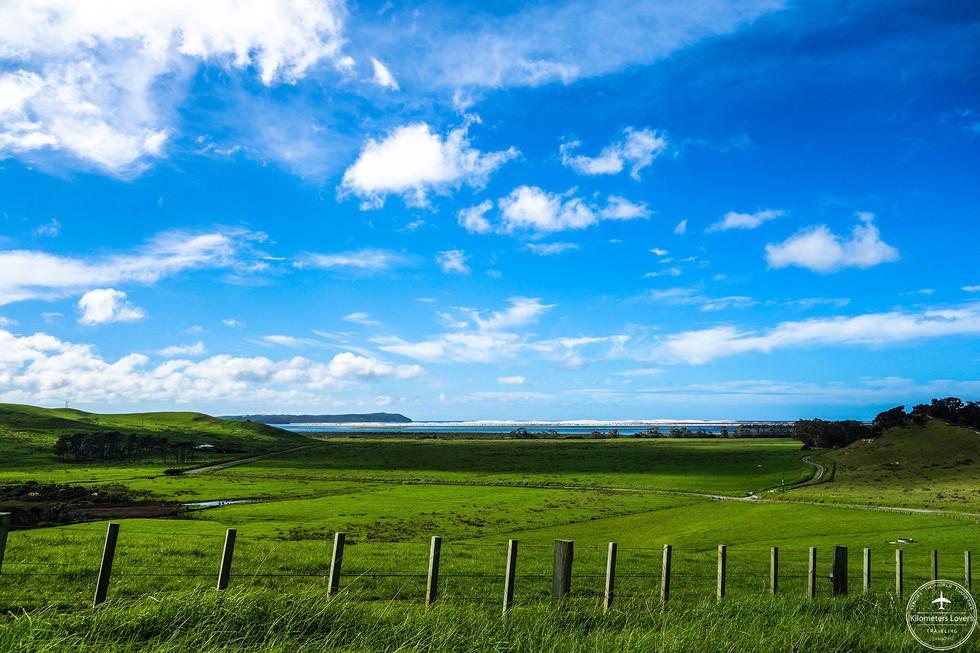NZ - Bay of islands