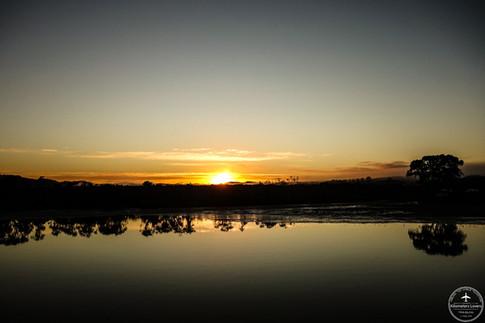 NZ - Wellsford