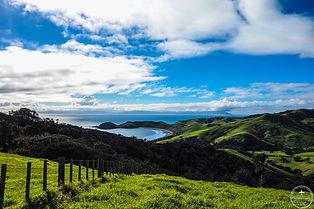 Nouvelle Zélande Bay Of Islands