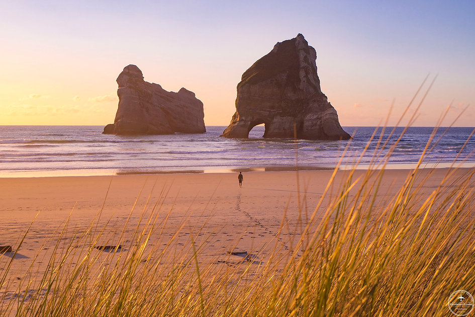 New Zealand - South Island Wharariki Beach