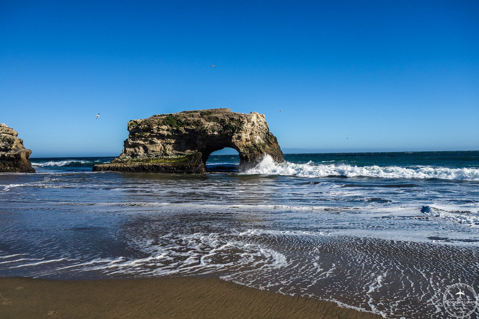 California - Santa Cruz
