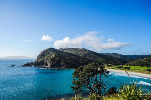 NZ - Coromandel