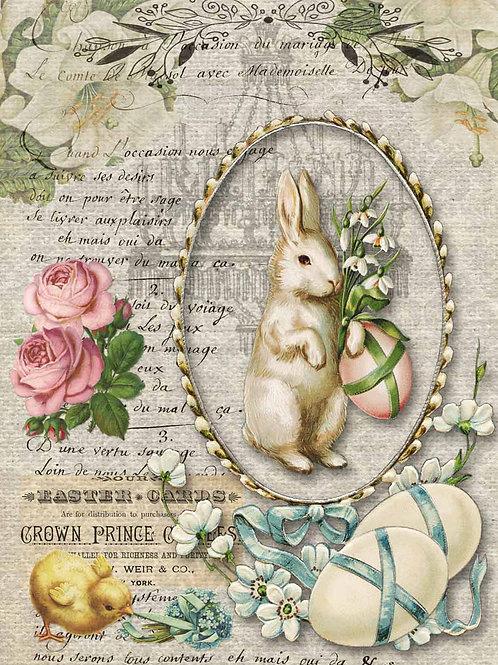 Nancy's Spring Bunny - DQRP_0102
