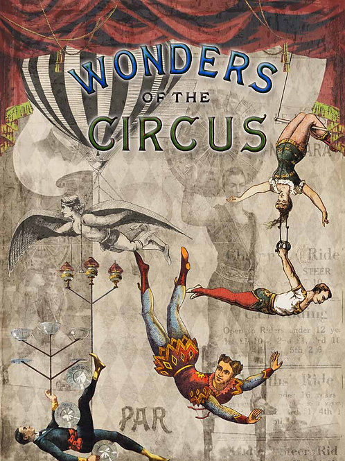 Wonders of the Circus DQRP_0099