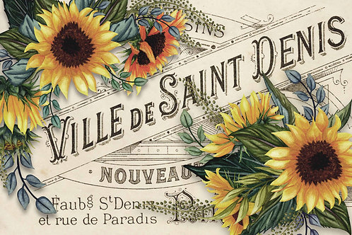 Sunflowers with Ville de St Denis Label