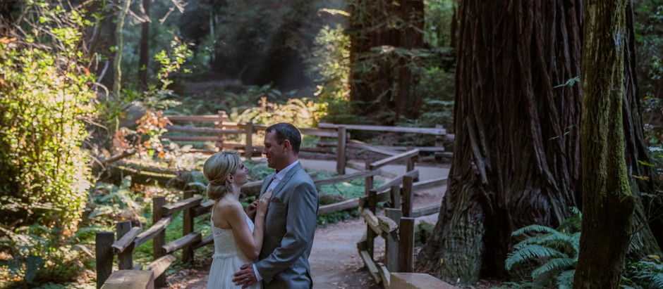 Stacey & Chris - Muir Woods National Monument