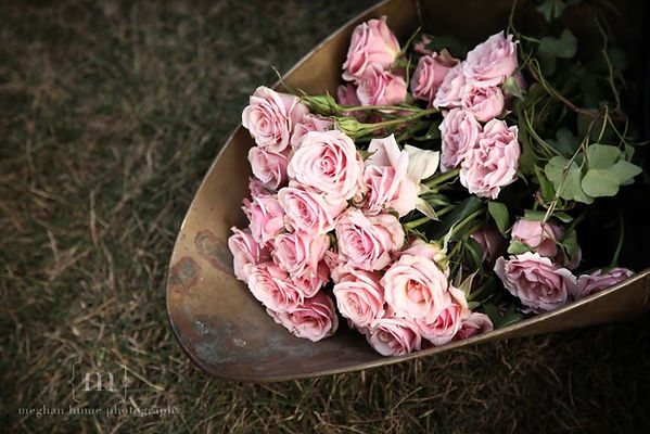pink roses in copper container idea.JPG