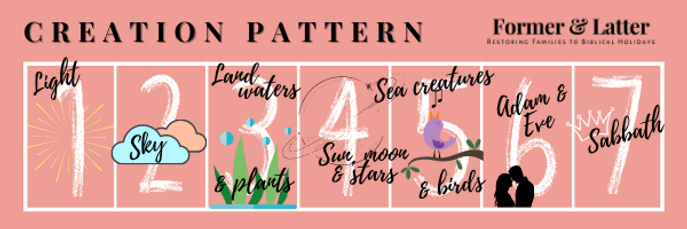Creation Pattern Graphic.png