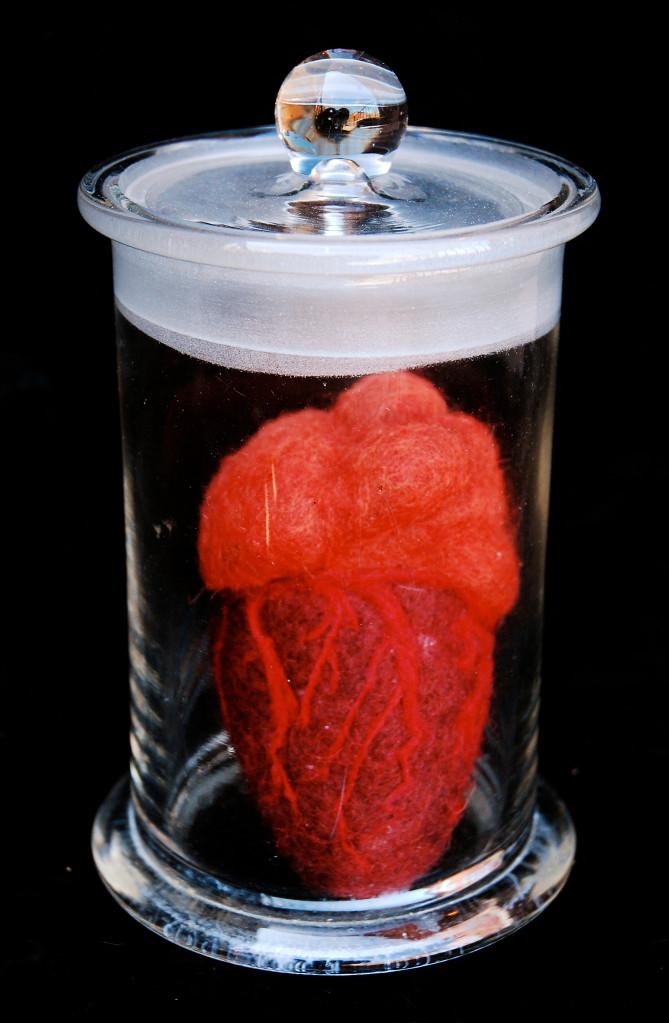 Specimen (Heart)