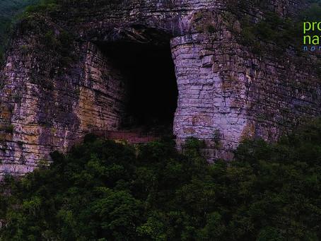 Pronatura Noreste promueve el primer santuario de murciélagos en México