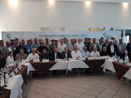 Por primera vez, usuarios y sociedad civil asumen la representación de la Asamblea General de Usuari