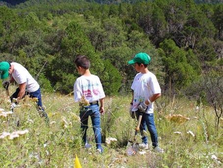 Reforestación social en el cañón de san José de las Boquillas, Santiago N.L.