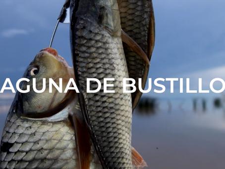 """Estreno del documental """"Laguna de Bustillos"""""""